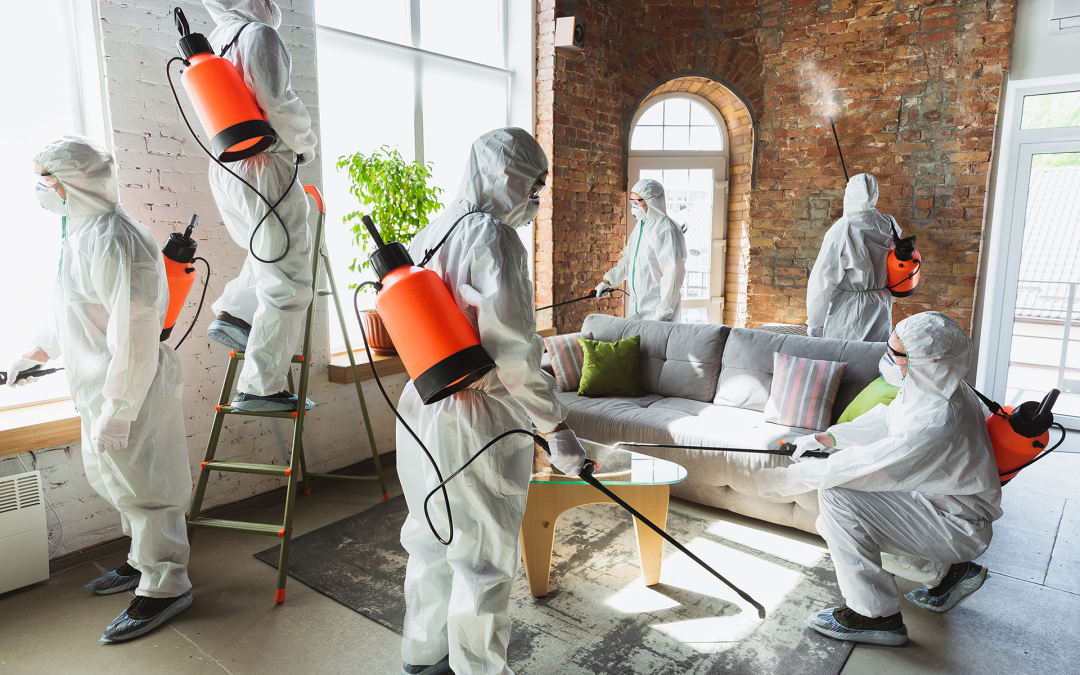 Effective and efficient disinfection for your business